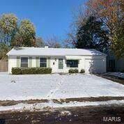 1121 Saint Boniface Drive, Cahokia, IL 62206 (#19087834) :: Peter Lu Team