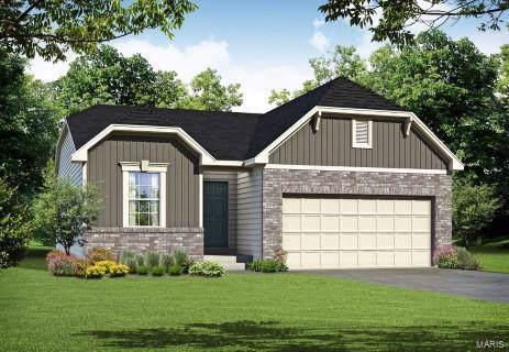 184 Noahs Mill Drive, Lake St Louis, MO 63367 (#19088353) :: Sue Martin Team