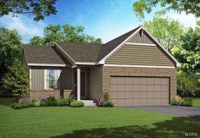 169 Noahs Mill Drive, Lake St Louis, MO 63367 (#19088392) :: Sue Martin Team