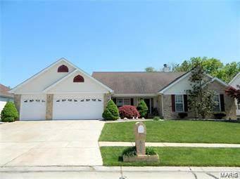 616 Logan Valley Drive, Saint Peters, MO 63376 (#20003523) :: Clarity Street Realty