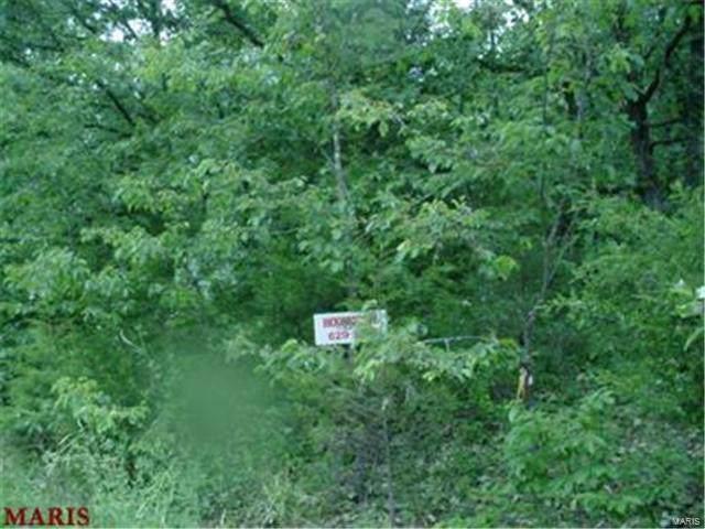 0 Peacock Road Lot 5, Saint Clair, MO 63077 (#20004714) :: RE/MAX Vision