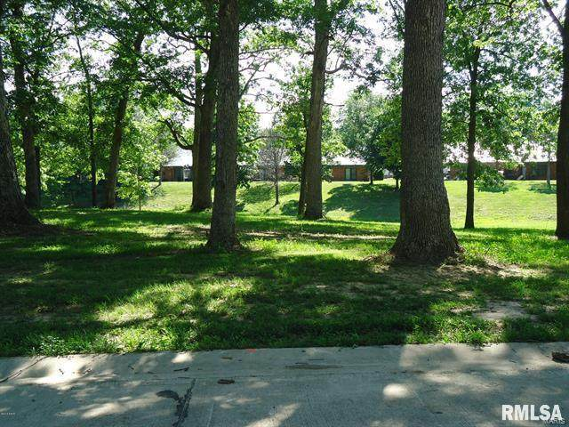 11 Coventry, Salem, IL 62881 (#20010059) :: Fusion Realty, LLC