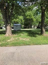 116 St. Ellen, O'Fallon, IL 62269 (#20012875) :: Clarity Street Realty