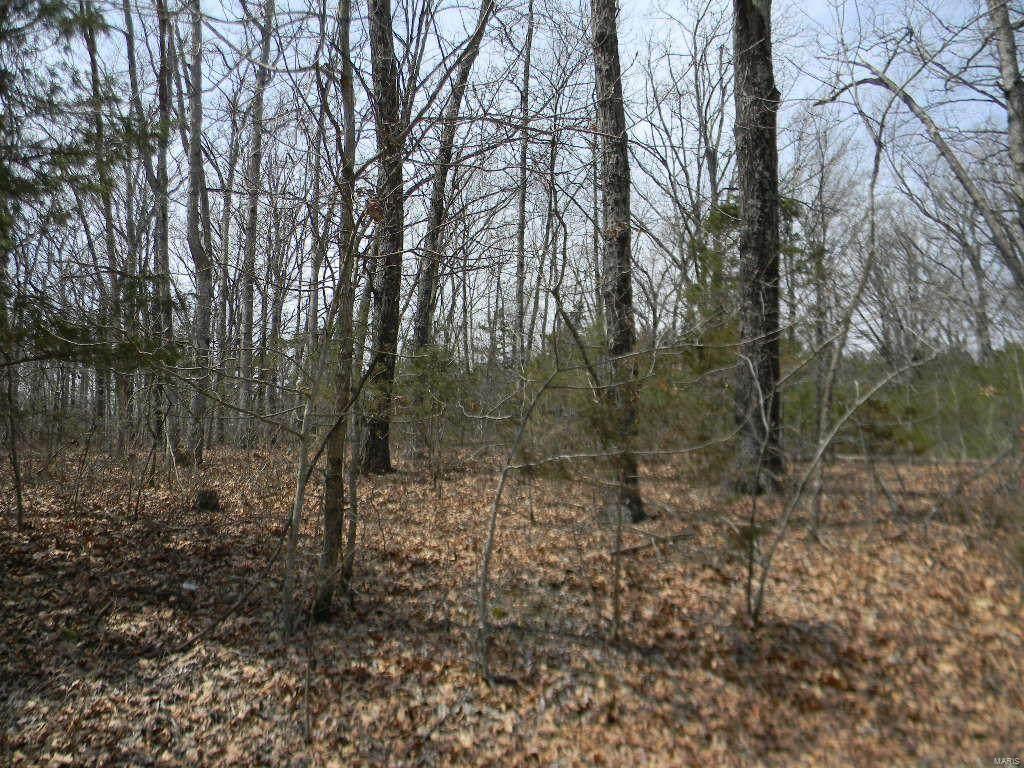 0 Cypress Leaf - Blk 4, Lot 61 - Photo 1