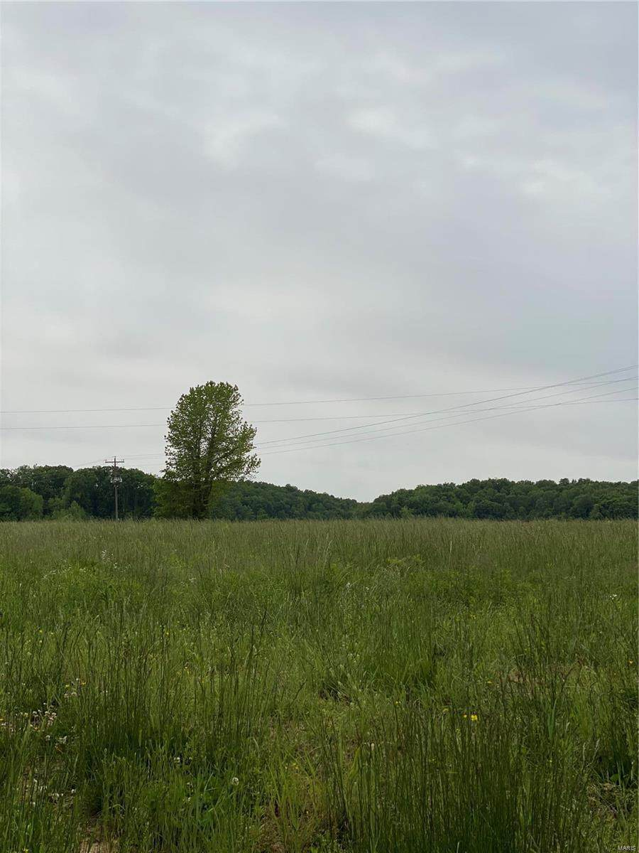 551 County Road 551 A - Photo 1