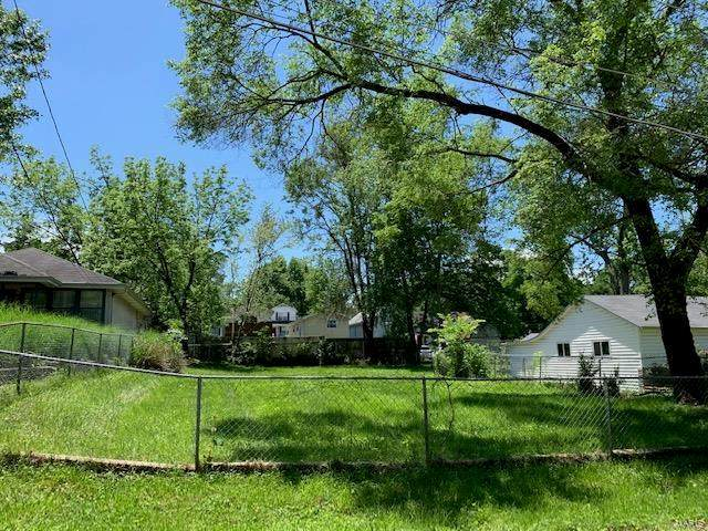 5610 Staely Avenue, St Louis, MO 63123 (#20036084) :: Clarity Street Realty