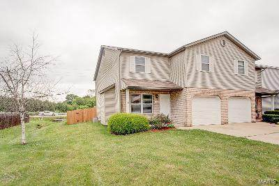 1616 Progress Lane, Belleville, IL 62221 (#20045811) :: Clarity Street Realty