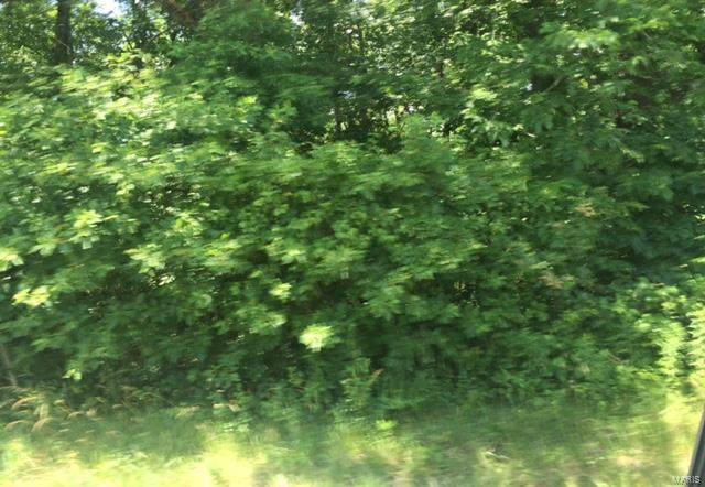 0 Highway 17 South Tract A - Photo 1