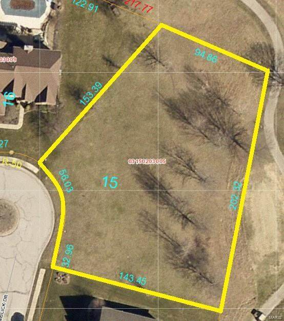 502 Niblick, Caseyville, IL 62232 (#20054341) :: Tarrant & Harman Real Estate and Auction Co.
