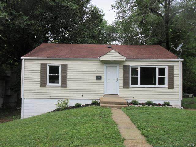 225 S Harvey Avenue, St Louis, MO 63135 (#20055182) :: The Becky O'Neill Power Home Selling Team