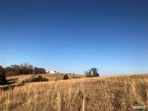 0 Madison 207 Tract #7, Fredericktown, MO 63645 (#20055587) :: The Becky O'Neill Power Home Selling Team