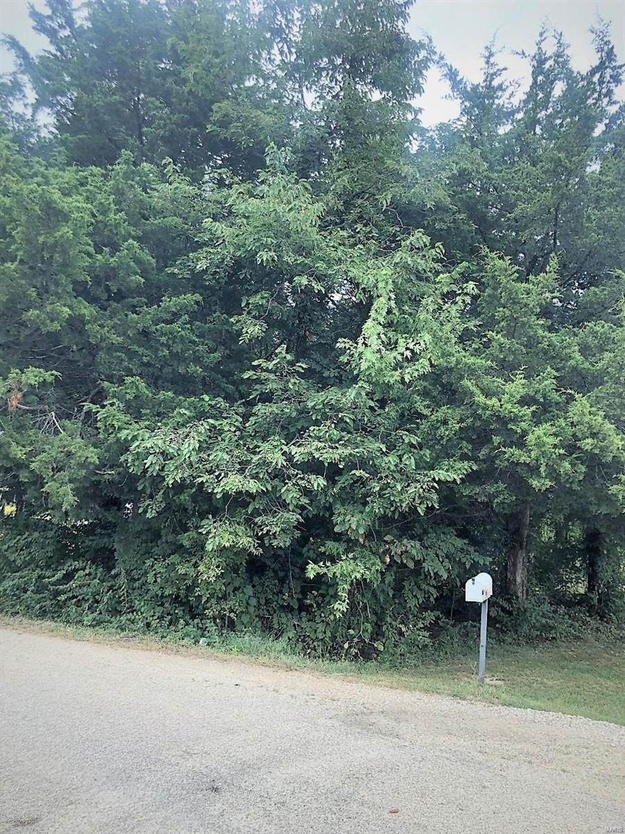 0 Lot 25 Lakewood Drive - Photo 1