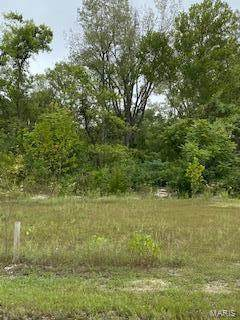 1695 Old State Road M - Photo 1