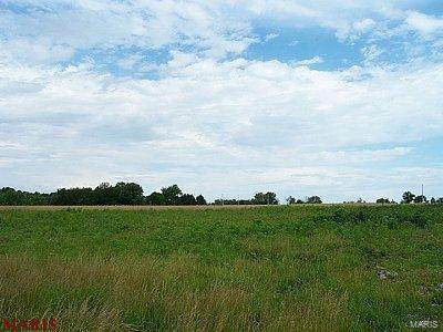 0 30.77 Acres Hwy M, Wright City, MO 63390 (#20069878) :: The Becky O'Neill Power Home Selling Team