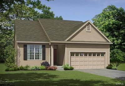 1 Denmark 1.5 @ Caledonia, O'Fallon, MO 63368 (#20072692) :: Walker Real Estate Team
