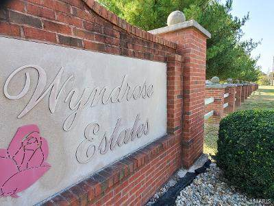 151 Wyndrose Estates Drive, Belleville, IL 62223 (#20073137) :: Hartmann Realtors Inc.