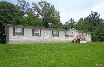 4001 County Road 351, Millersville, MO 63766 (#20079599) :: PalmerHouse Properties LLC