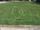 22 Lot 22 Meador West Rand Sub Di, Vandalia, IL 62471 (#20080293) :: Matt Smith Real Estate Group