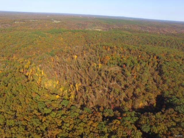 4130 Beefsteak Hollow Road, Boss, MO 65440 (#20082863) :: Parson Realty Group