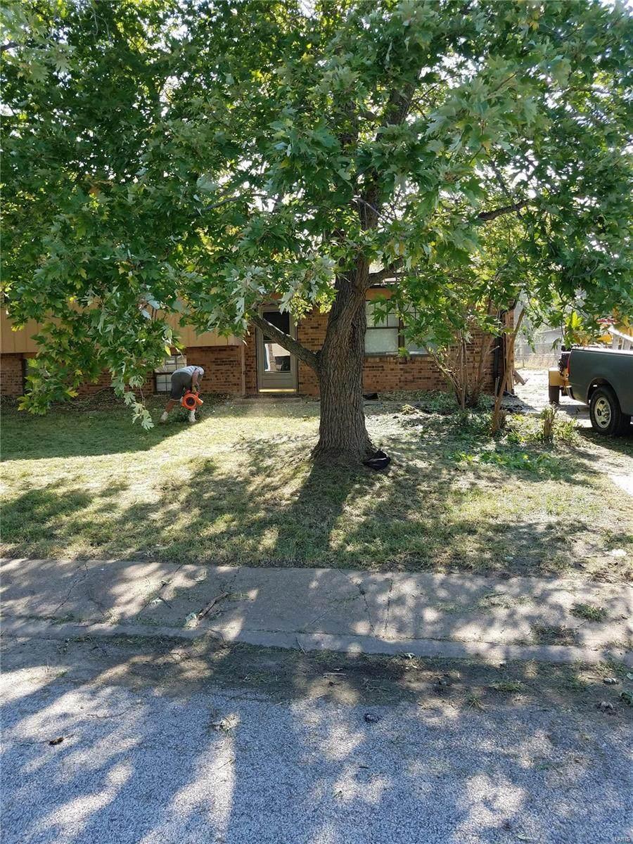 1996 Oak Tree - Photo 1