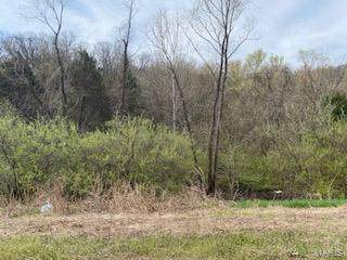 2170 New State Highway M, Barnhart, MO 63012 (#21004014) :: Realty Executives, Fort Leonard Wood LLC