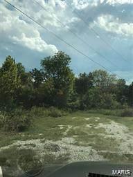 0 Delaine Avenue, De Soto, MO 63020 (#21007374) :: Matt Smith Real Estate Group