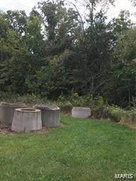 0 Delaine Avenue, De Soto, MO 63020 (#21007385) :: Matt Smith Real Estate Group