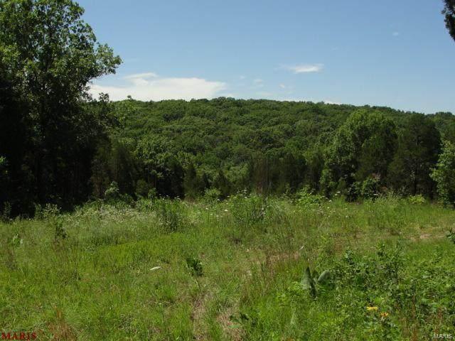 614 Hidden Springs Road, De Soto, MO 63020 (#21009480) :: Walker Real Estate Team