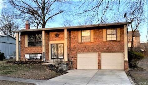 6205 Treeridge Trail, St Louis, MO 63129 (#21012203) :: RE/MAX Professional Realty