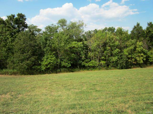 119 Coyote Crest Lane, Augusta, MO 63332 (#21019207) :: Parson Realty Group