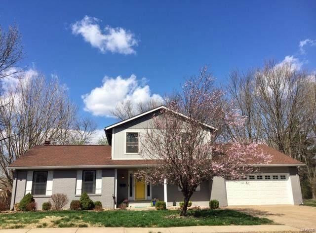 312 Donna Drive, O'Fallon, IL 62269 (#21019215) :: Clarity Street Realty
