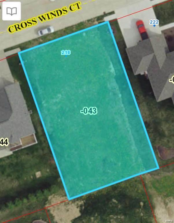 218 Crosswinds Court, Waterloo, IL 62298 (MLS #21019728) :: Century 21 Prestige