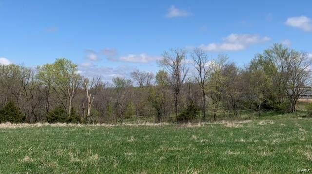 0 Keystone Valley, Hannibal, MO 63401 (MLS #21023902) :: Century 21 Prestige