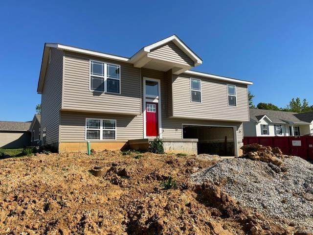 331 Cuivre Creek Court, Troy, MO 63379 (#21030438) :: Parson Realty Group