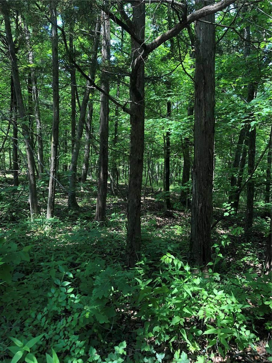 4 Acres On Ridge Road - Photo 1