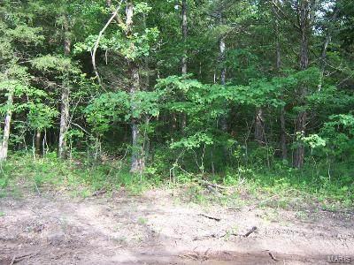 2231 Liberty Crossing Trail, Hillsboro, MO 63050 (#21035516) :: Krista Hartmann Home Team