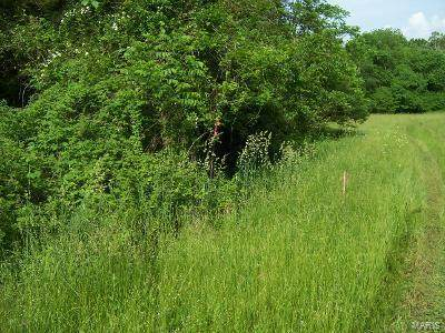 2238 Liberty Crossing Trail, Hillsboro, MO 63050 (#21037293) :: Krista Hartmann Home Team