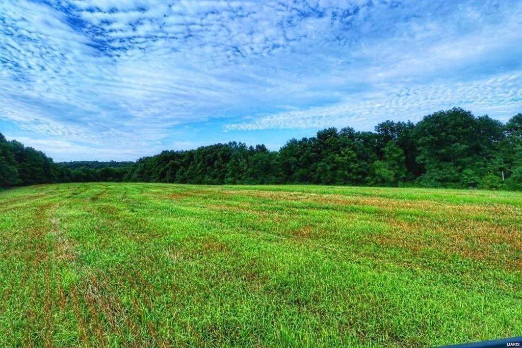 3 Timber Ridge Drive (5.5 Acres) Drive - Photo 1