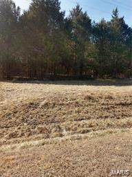 1 Hidden Hills Road, Stoutland, MO 65567 (#21041519) :: Realty Executives, Fort Leonard Wood LLC