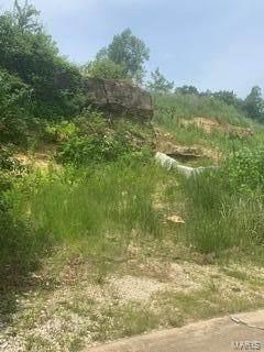 3939 Sierra Parkway, Arnold, MO 63010 (#21042201) :: Jeremy Schneider Real Estate