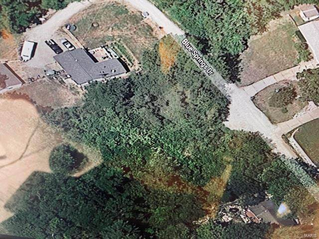 0 Lot 12 Blue Springs Drive, Imperial, MO 63052 (#21042696) :: Krch Realty
