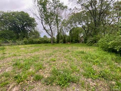 5213 Minerva Avenue, St Louis, MO 63113 (#21043079) :: Jeremy Schneider Real Estate