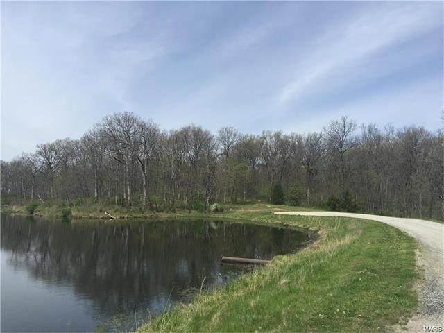 0 Weeks Lane, LITCHFIELD, IL 62056 (#21046675) :: Krista Hartmann Home Team