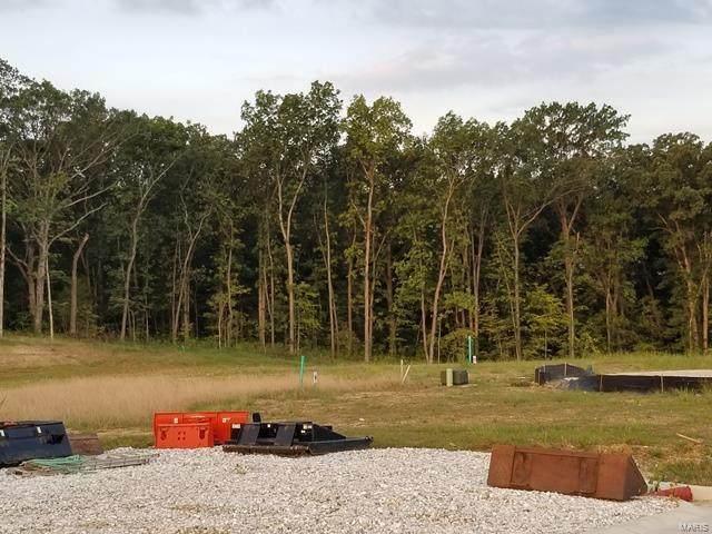 517 Stonewolf Creek Drive, Wentzville, MO 63385 (#21048795) :: Krista Hartmann Home Team