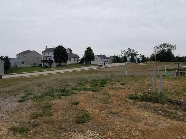 516 Stonewolf Creek Drive, Wentzville, MO 63385 (#21048837) :: Krista Hartmann Home Team