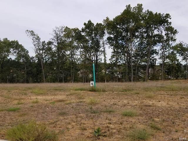 511 Stonewolf Creek Drive, Wentzville, MO 63385 (#21048844) :: Krista Hartmann Home Team