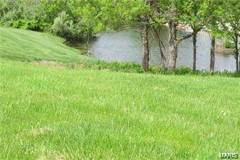 2804 Scenic Lake Drive, New Athens, IL 62264 (#21053972) :: Parson Realty Group