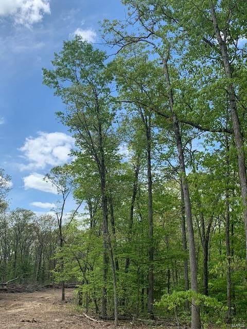 14 Chestnut Ridge, Farmington, MO 63640 (#21056639) :: Krista Hartmann Home Team
