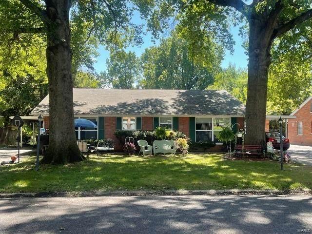 29 Beth Ann Drive, Belleville, IL 62221 (#21067301) :: Century 21 Advantage