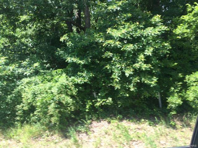 0 Highway 17 South Tract 1 S, Laquey, MO 65534 (#21074425) :: RE/MAX Next Generation